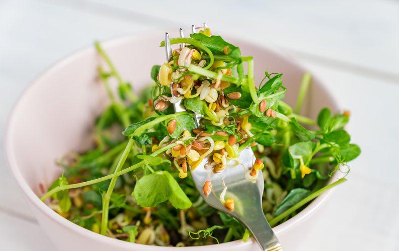 maş fasulyeli salata